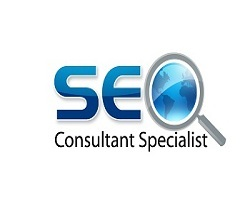 Orlando SEO Consultant Services for Businesses in the Orlando Florida area
